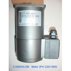 5IK60GN-SM   Carousel Motor 3PH  220V (60W)